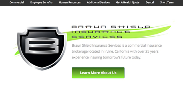 braunshield.com